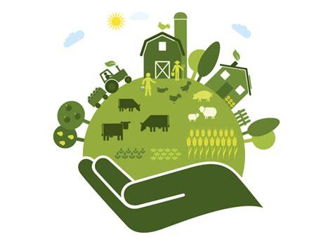 durable+repair+agroecologique+environemment+calédonie+repair