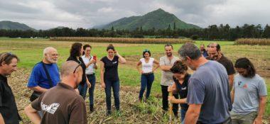REPAIR+assemblee+générale+agriculture+responsable+nouvelle+caledonie+AR+label+responsable+innovante+AG+CA+adecal+couvert+végétaux+maraichages+cultures