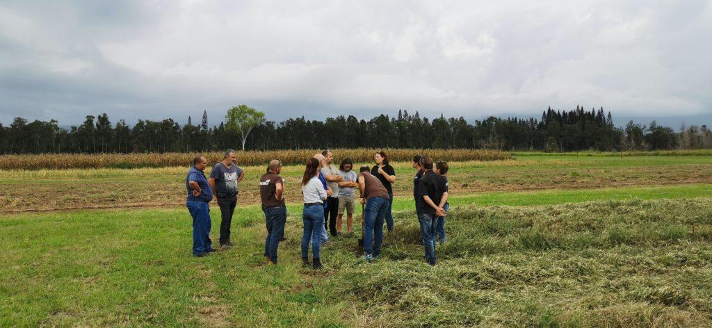 REPAIR+assemblee+générale+agriculture+responsable+nouvelle+caledonie+AR+label+responsable+innovante+AG+CA+adecal+maraichage+couverts+végétaux+formations